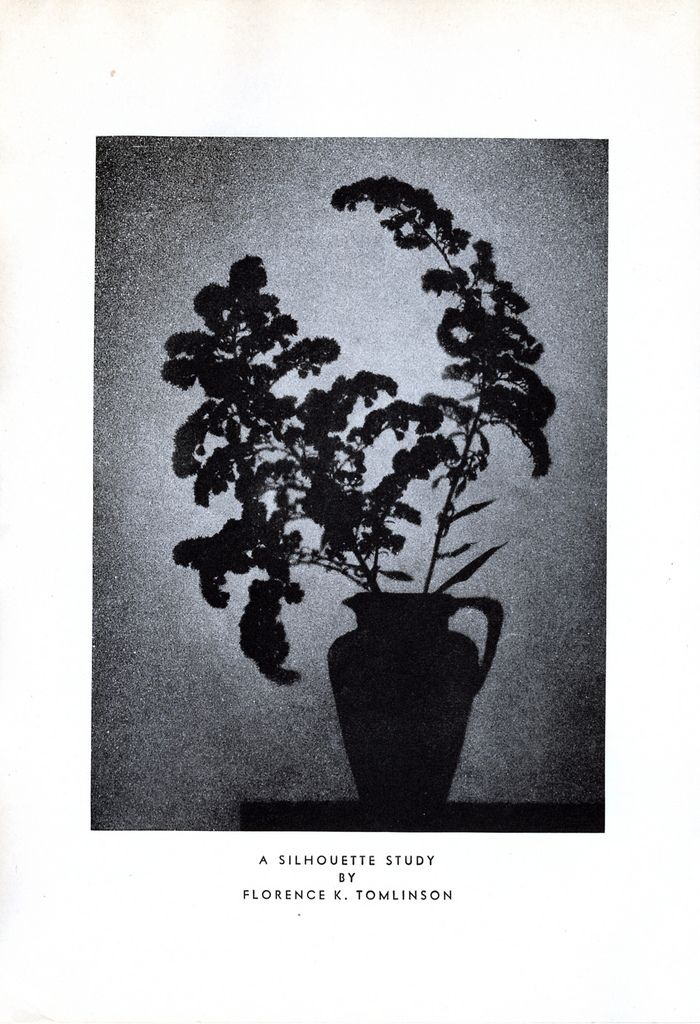 A Silhouette Study By Florence K Tomlinson 1934 Silhouette Photo Photo Sharing