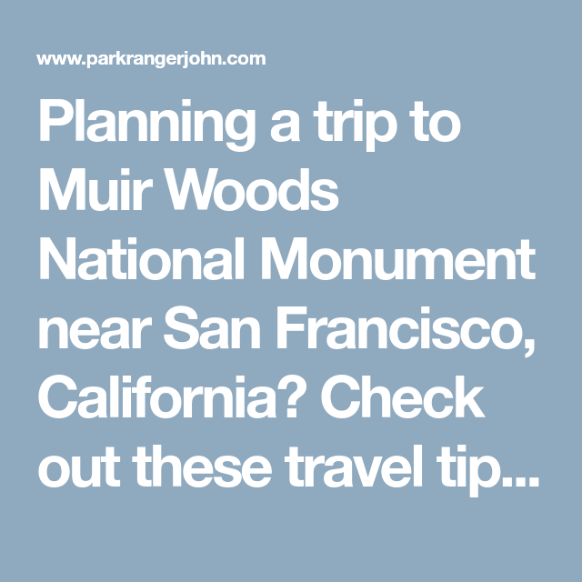 Planning A Trip To Muir Woods National Monument Near San