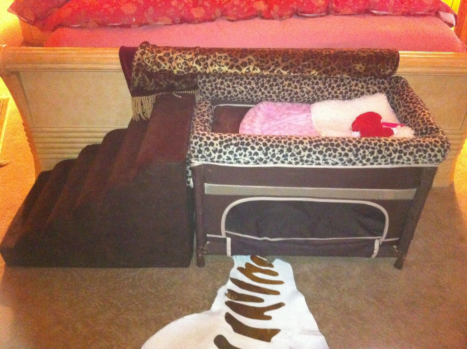 Image result for co sleeper for dogs Toddler bed, Pamper