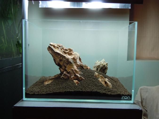 Ohko Stone Information Where To Buy Red Cherry Shrimp Aquascape Nano Aquarium Aquarium