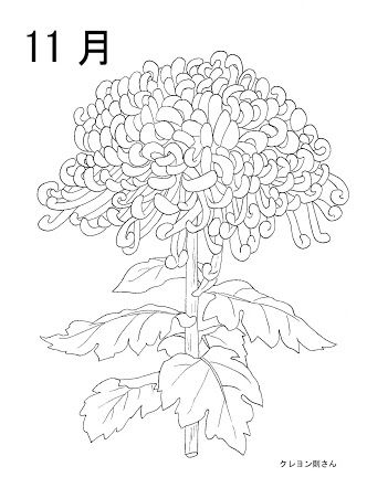 塗り絵 11月 花の画像検索結果 ぬりえ 11月 花塗り絵ぬりえ
