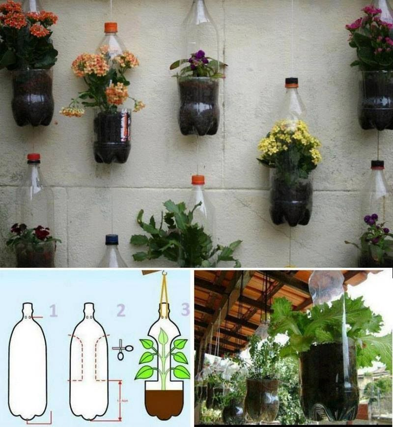 how to make a hanging garden out of plastic bottles