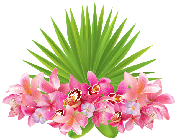 Tropical Flowers Png Clipart Image Flower Clipart Images Flower Clipart Flower Illustration