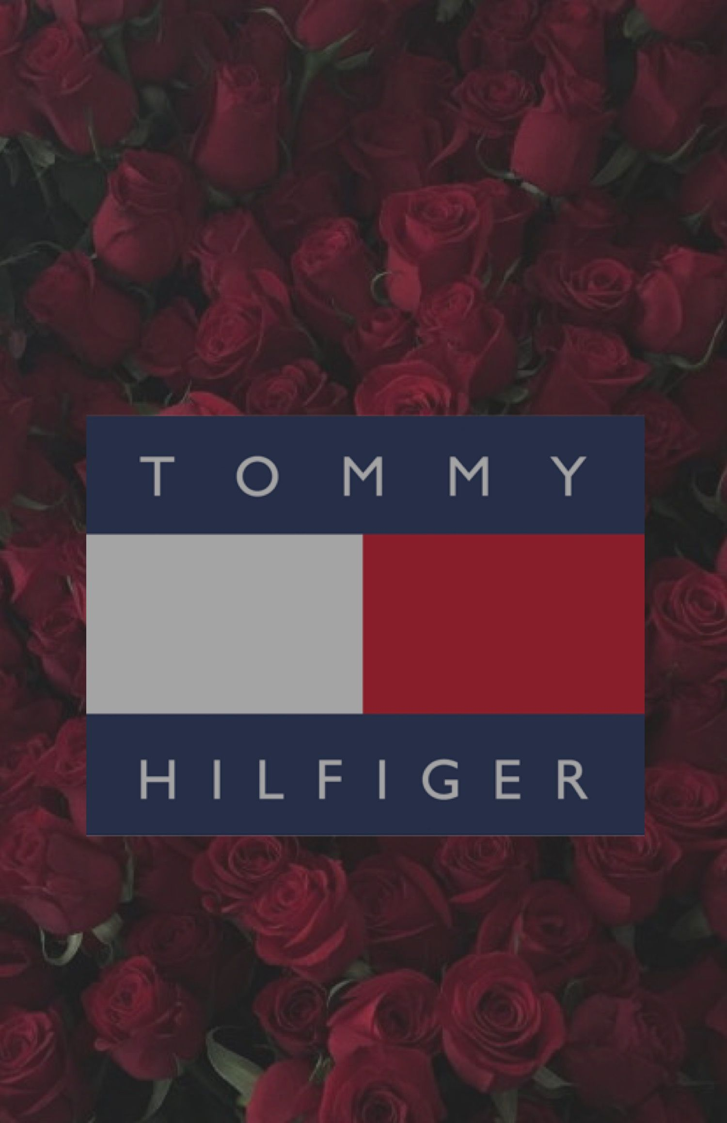 Wallpaper tommy hilfiger rose background