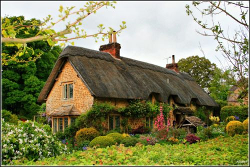 I love old cottage homes..what I'd give to have a house like that :) soo pretty!