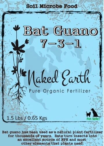 Bat Guano Is A Valuable Resource At Least For Gardeners