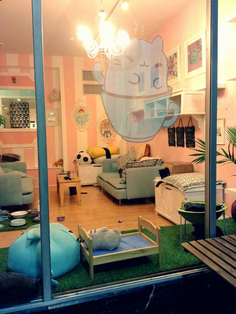 Kawaii Kitty Cafe The Ultimate CatLover's Experience