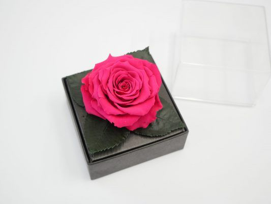 Jetfreshflowers Preserved Roses Are Available In Acrylic