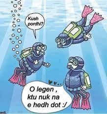 Rezultate Imazhesh Per Foto Qesharake Cartoon Jokes Funny Cartoon Pictures Funny Picture Jokes