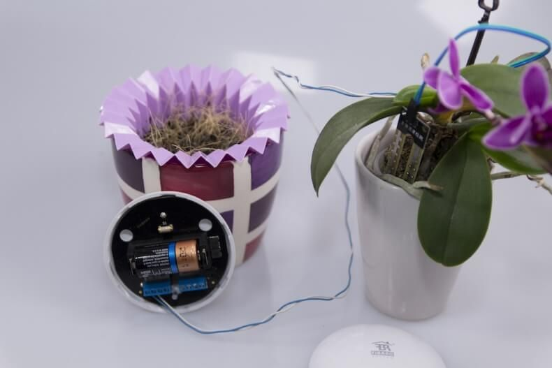 Flower Power und Regensensor – Basteltipp mit dem Fibaro Floodsensor