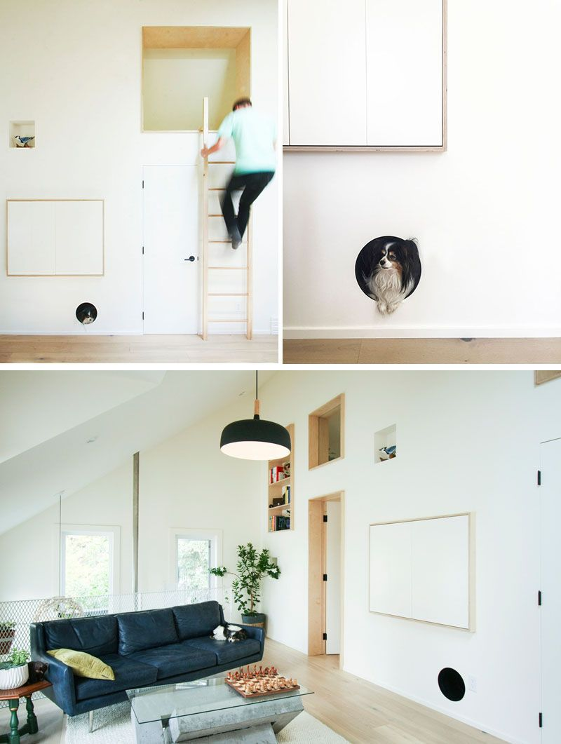 This Modern Laneway House Has A Built In Dog Bed Nook That S Been Into The Wall And Allows Family Pet To Feel Safe Removes Need For