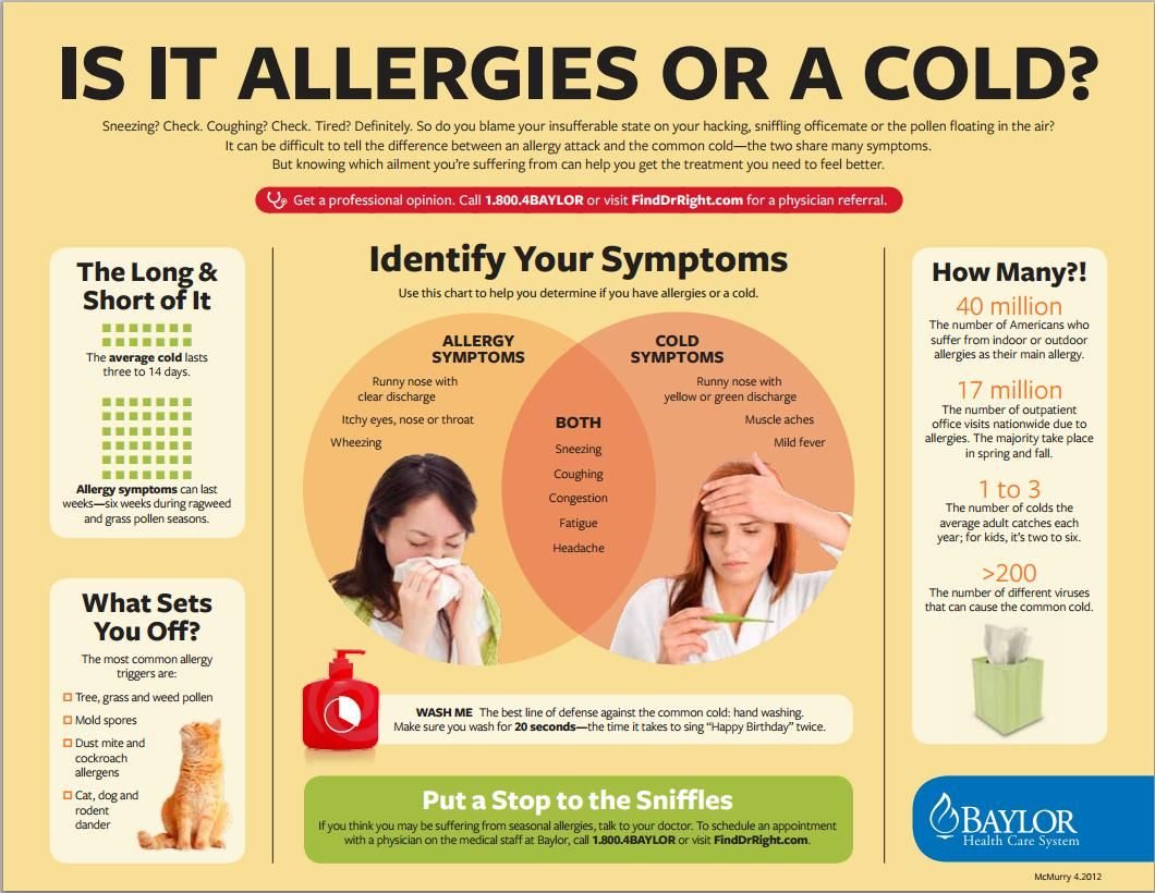 [Printable] Infographic Is it an allergy attack or the