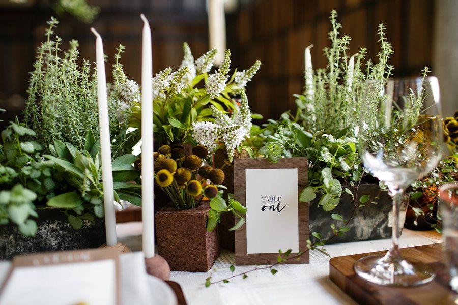 folhagens e ervas em vasos pequenos de madeira para a mesa da comida