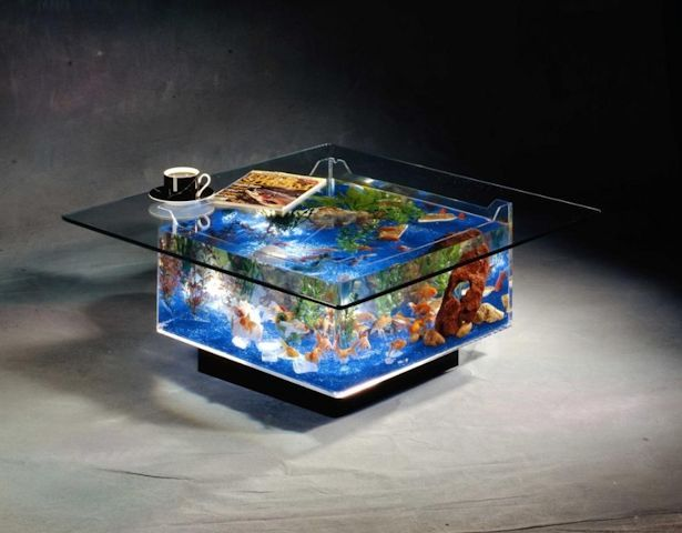 fish tank coffee table: aquarium coffee table | fish tank coffee