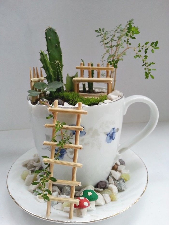 Teacup Fairy Garden | crafts | Pinterest | Teacup, Fans ...
