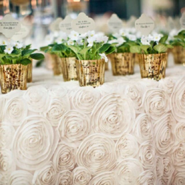 Rose Pleated Table Cloth And Plant Favors