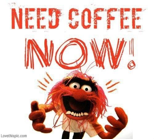 25971 Need Coffee Now Jpg 500 450 Need Coffee Coffee Humor