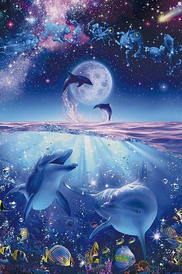 Pin By Pinter Sandorne On Marine Mammals Dolphin Art Cute Animal Drawings Beautiful Sea Creatures