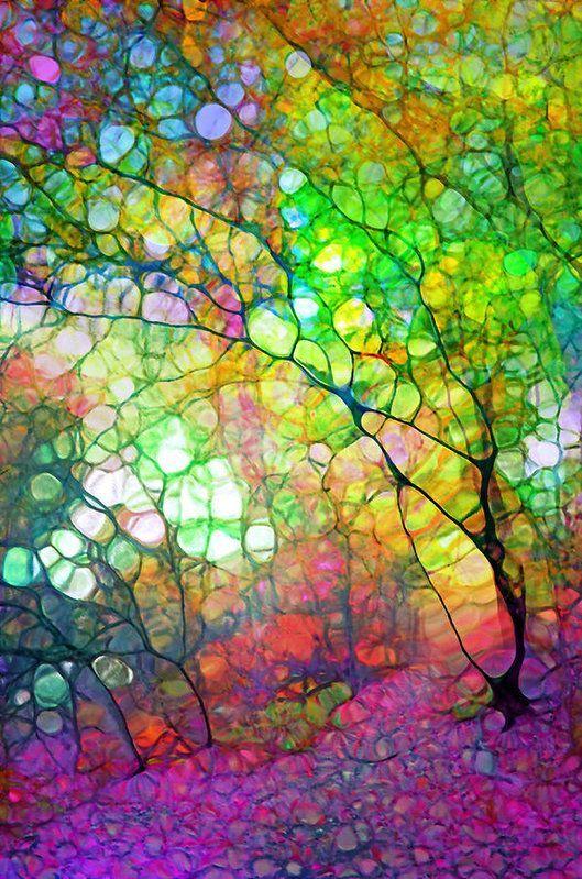 Colour Combustion Art Print by Tara Turner