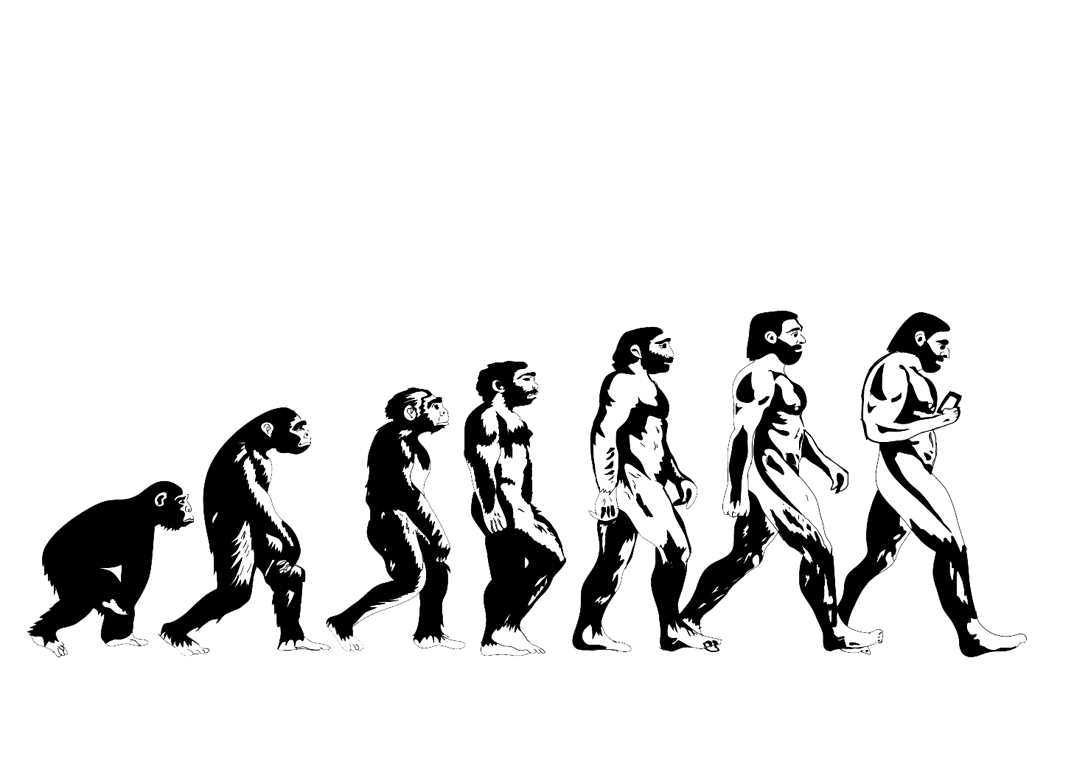 summary on evolution of man The first humans: a summary perspective on the origin and early evolution of the genus homo.