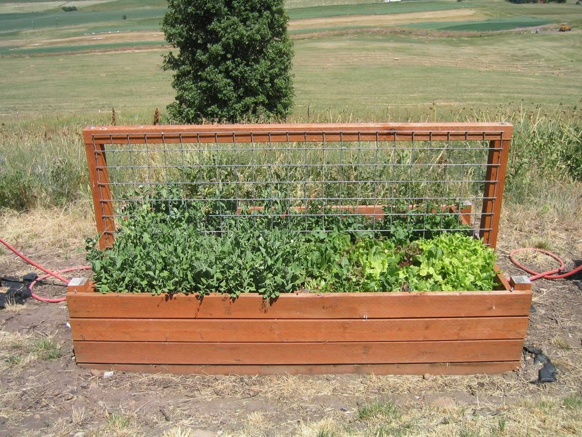 Garden Box. I So Am Gonna Have My Tarzan Make Me This With Recycled Pallets