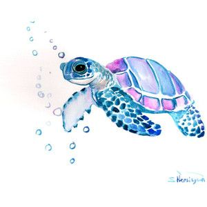 Watercolor Turtle Clipart Google Search Watercolor Sea Sea