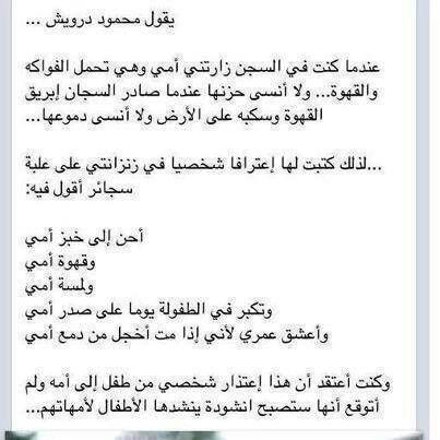محمود درويش Arabic Quotes Words Quotes