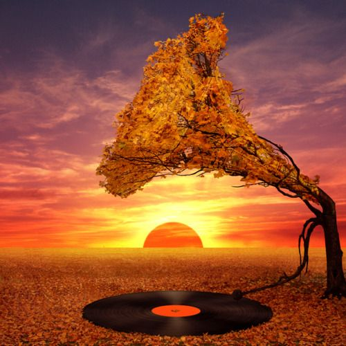 record player in the desert