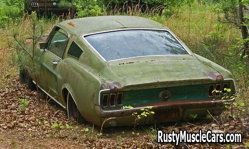 1967 fastback mustang in junkyard - Rusty muscle car photos and