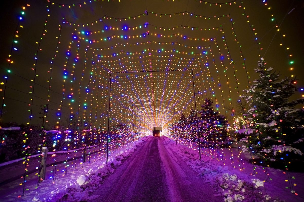 Country Christmas Drive Through Light Display Holiday