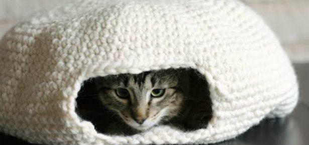 Diy Crochet Cat Bed Crochet Hooks Craft Ideas And Ravelry
