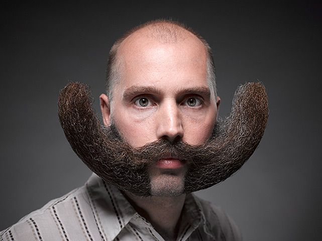 The National Beard and Moustache Championships – in pictures | Crazy beard, Beard no mustache, Moustache