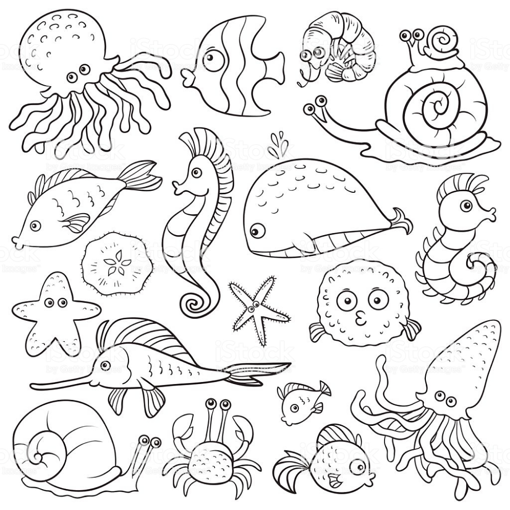 Coloring Book Sea Life Royalty Free Coloring Book Stock Illustration Download Image Now Ocean Coloring Pages Coloring Books Coloring Pages