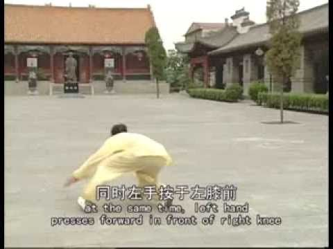 Chen Style Tai Chi Old Frame Routine Two 2/2 (Eng Sub) Lão Giá Lộ Thứ Hai    YouTube | Chen Complete | Pinterest | Chen, Tai Chi And Routine
