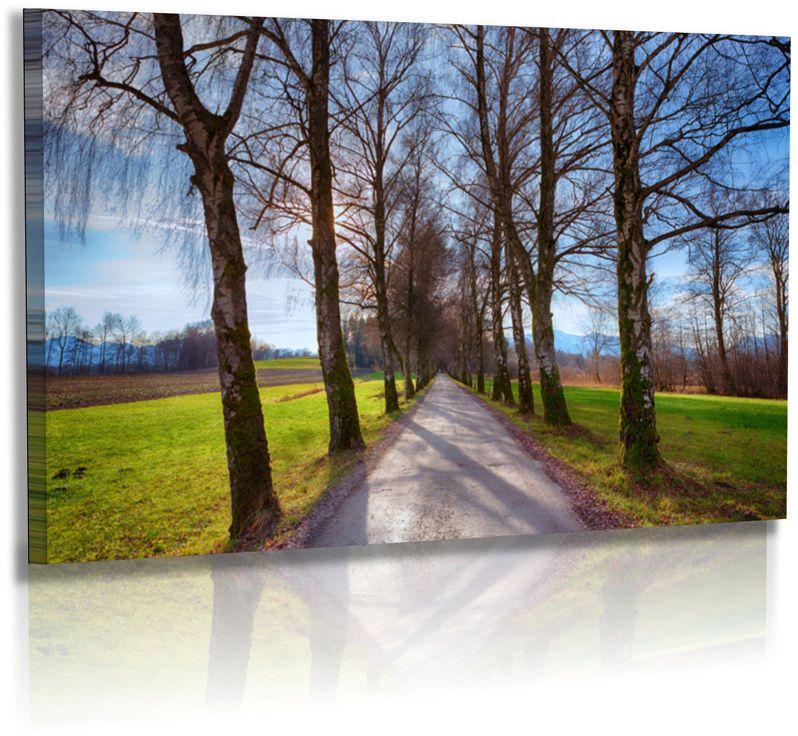 naturbilder landschaft chiemgau b ume allee himmel wandbilder xxl unbedingt kaufen. Black Bedroom Furniture Sets. Home Design Ideas