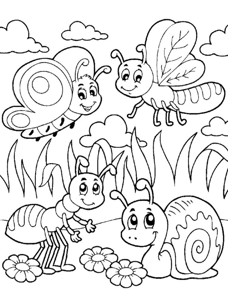Insects Coloring Page Pintable Coloring Ideas Bug Coloring Pages Insect Coloring Pages Summer Coloring Pages