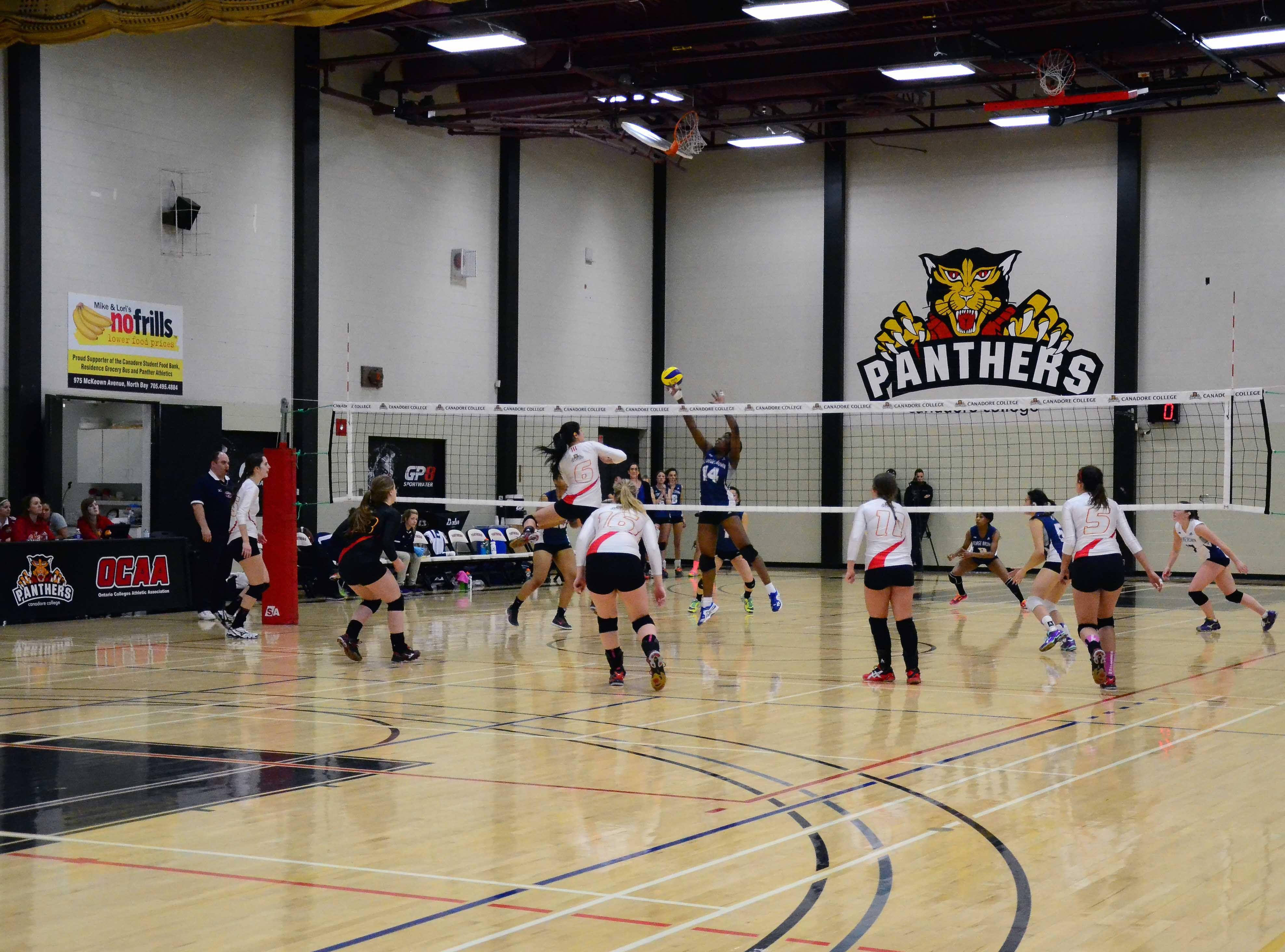 Women S Varsity Volleyball Http Www Canadorecollege Ca Athletics Women E2 80 99s Volleyball Women Volleyball Volleyball Varsity