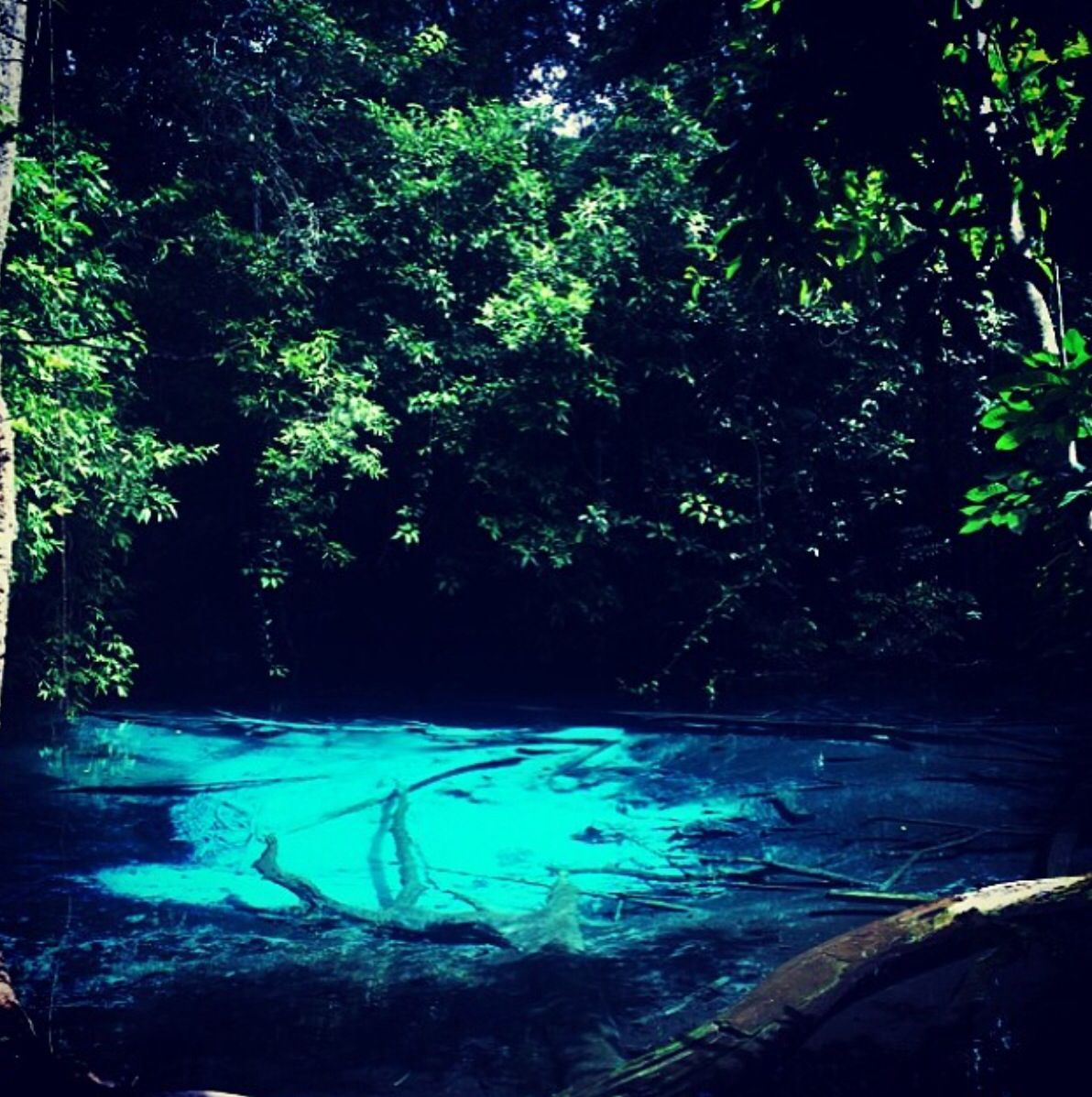 Emerald Pool, Krabi -DONE