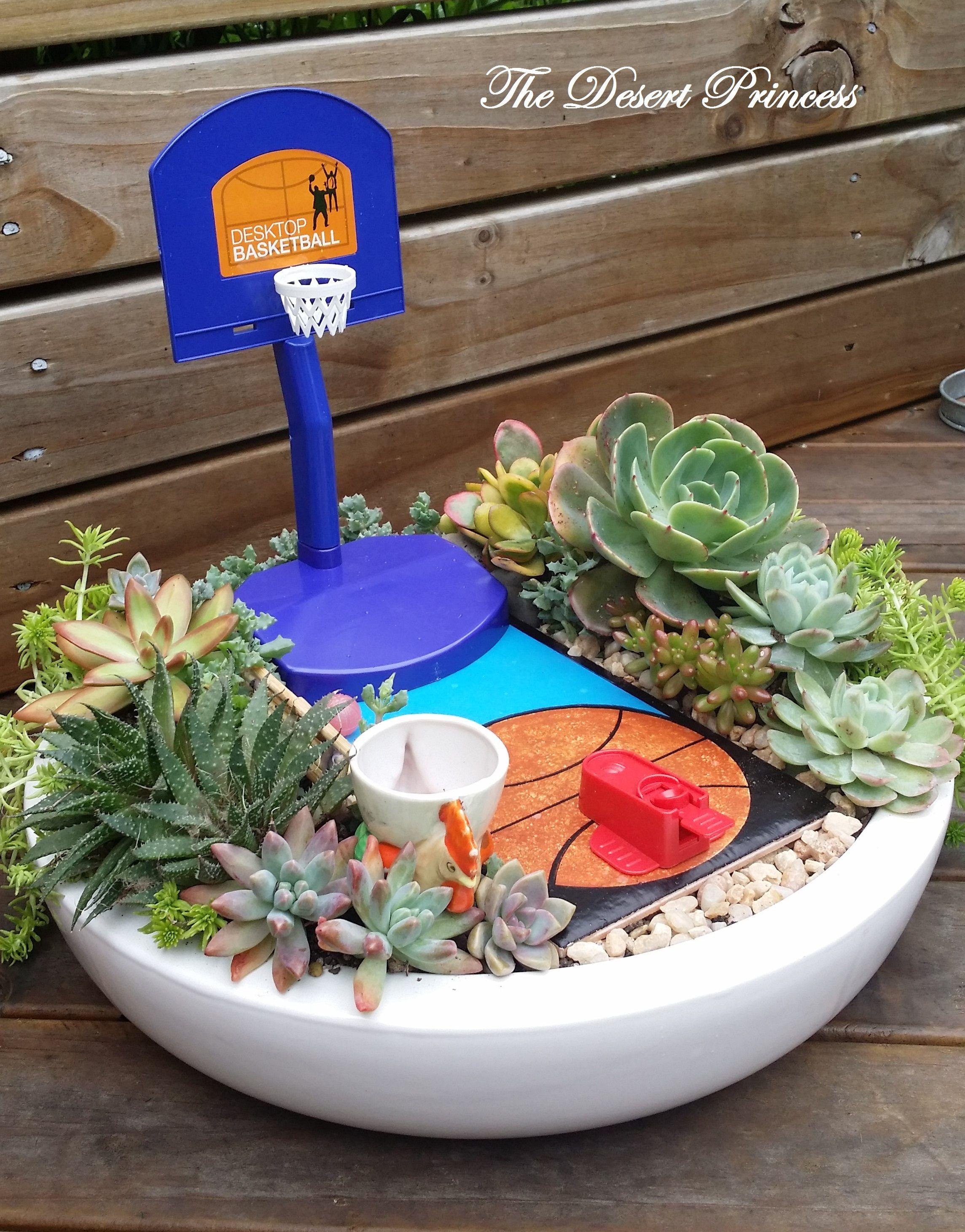 succulent mini garden basketball theme design by the desert
