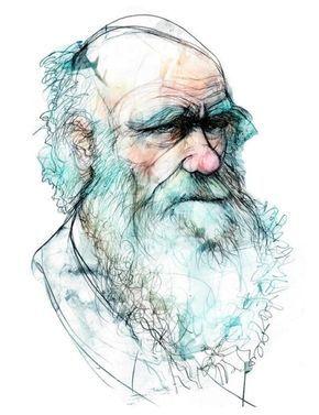 El Origen De Las Especies De Charles Darwin 1809 1882 La Teoria Que Revoluciono La Biologia Las Ilustracion De Retrato Teoria De Darwin Cientifico Dibujo