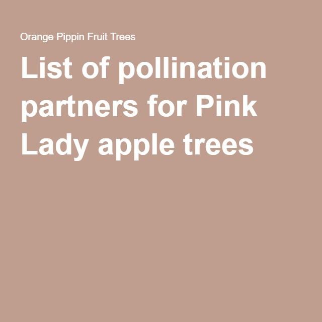 Online Pollination Checker For Fruit Trees Apple Tree Pollination Fruit Trees