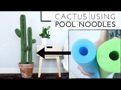 Cute Cactus DIY Plant