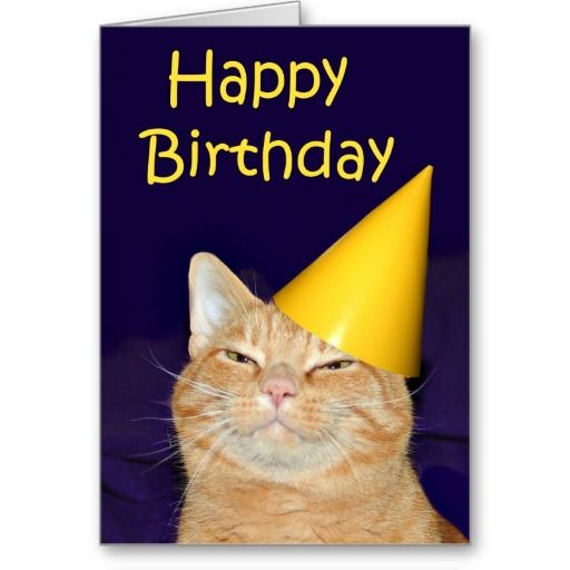 Happy Cat Birthday Greeting Card Cats Orange Tabby Lol Zazzle