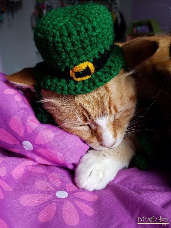 This Item Is Unavailable Etsy Leprechaun Cat Clothes Cat Hat