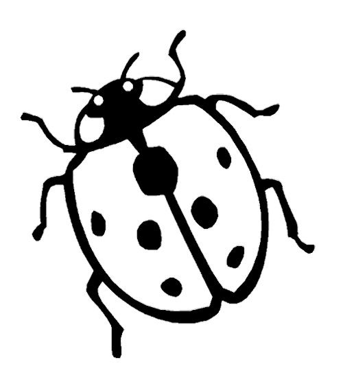 Baby Ladybug Coloring Pages Ladybug coloring page, Baby