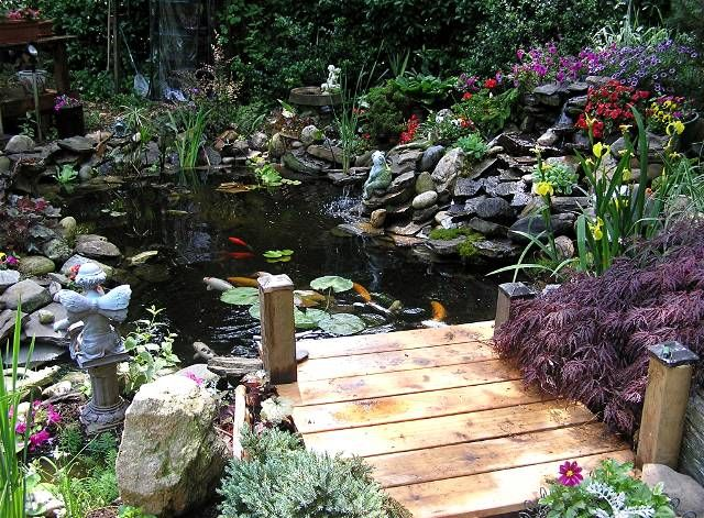 Small Pond Docks Decorative And Practical Ponds For Small