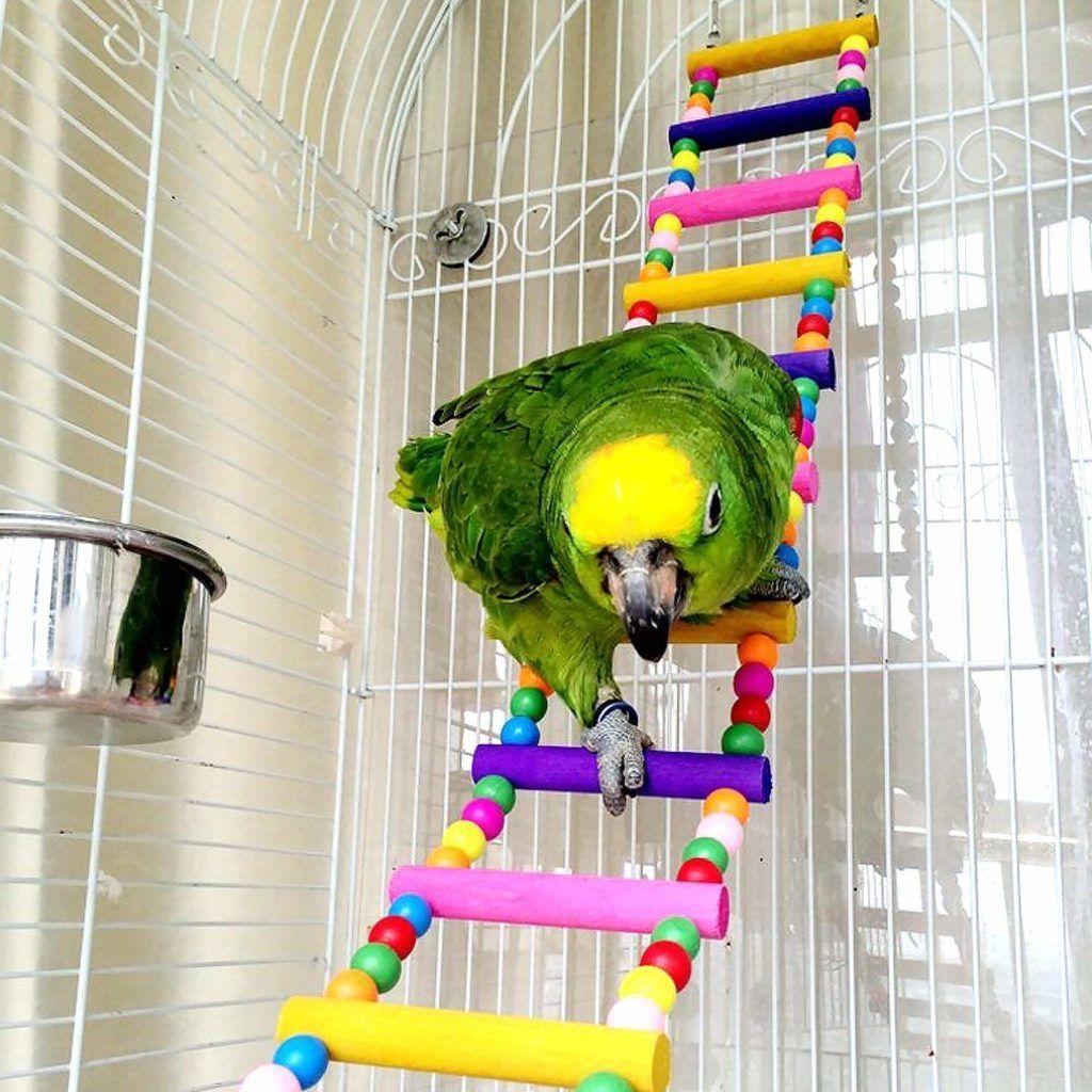 Ladder Bird Toys For Parrot Macaw African Greys Budgies Cockatiels Parakeet Hams