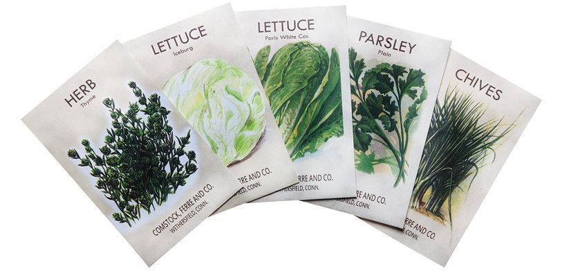 new england heirloom seeds kaufmann mercantile store herb garden vegetable