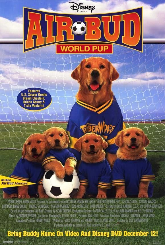 Air Bud World Pup 2001 Movie Poster 27x40 Disney Used In 2020