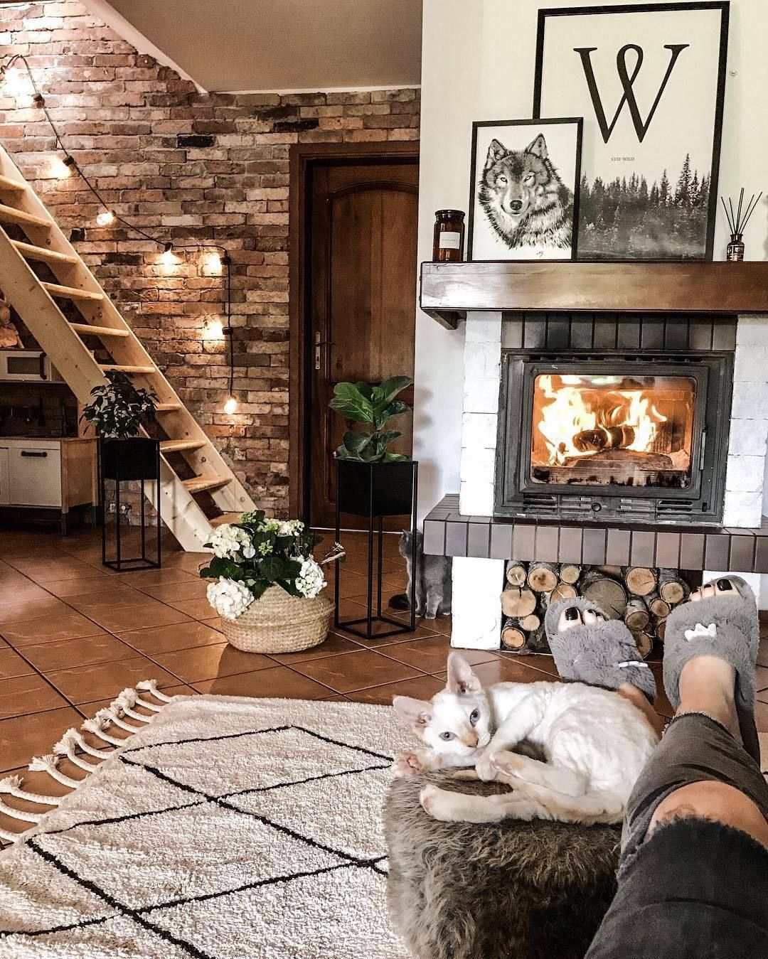 Home Interior Design Cozy With A Cat By The Side Cozy House